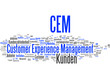 Customer Experience Management CEM