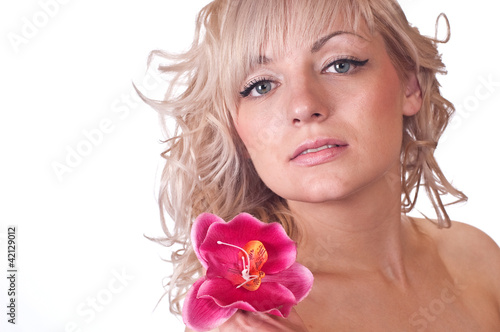 Fototapeten,erwachsen,sanftmütig,graziös,orchidee