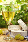 White wine, Brie, Camembert and grape, outdoor