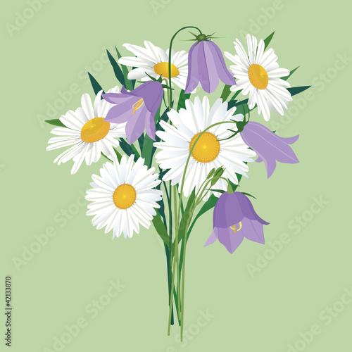 и колокольчиков, полевые цветы