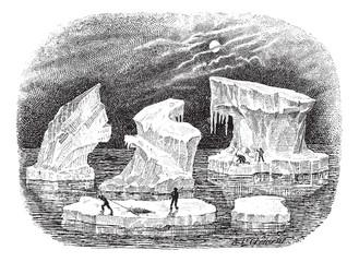 Icebergs, vintage engraving.
