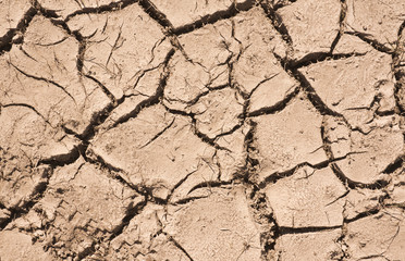 Cracked Soil Pattern Background