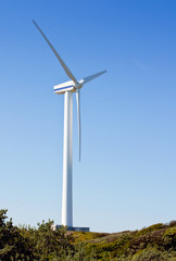 single wind power generator
