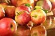 Äpfel auf nassem Tisch