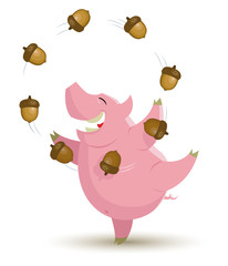 Pig is juggling acorns