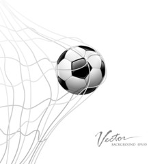 Soccer ball in net. isolated on white background, vector