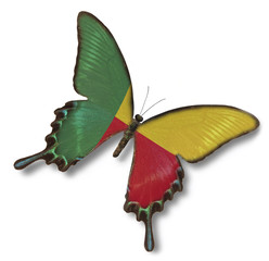 Benin flag on butterfly
