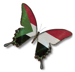 Sudan flag on butterfly
