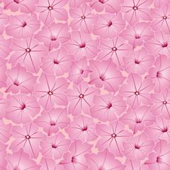 бесшовный фон из розовых цветов петунии, Print