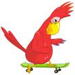 Funny Parrot. Skateboarding