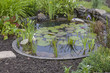 garden decoration in a cottage garden, pond with water-lily