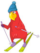 Funny Parrot. Skiing.