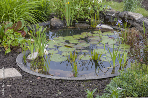 canvas print picture garden decoration in a cottage garden, pond with water-lily