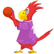 Funny Parrot. Basketball.