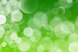 Green Bubbles background Flarium, white bubbles - 42184012