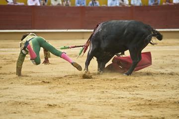Torero lanzado por el aire tras una cogida del toro.