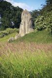 berkhamsted castle ruins hertfordshire uk poster