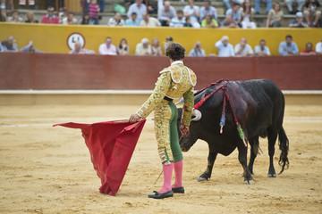 Torero tentando al toro para que entre a la muleta.