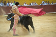 Torero ejecutando pases estatuarios con la muleta.