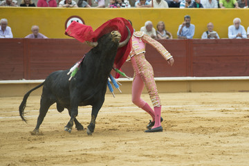Torero ejecutando un pase de pecho clásico.