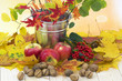 beautiful arrangement of autumn leaves and red apples and walnut