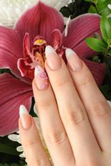 Female hands with manicure closeup