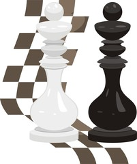 White and black king. Chess pieces