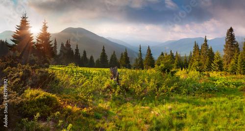 piekny-letni-krajobraz-w-gorach