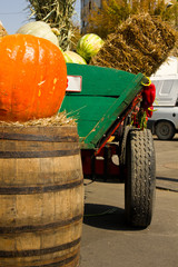 A harvest cart with autumn vegetabl