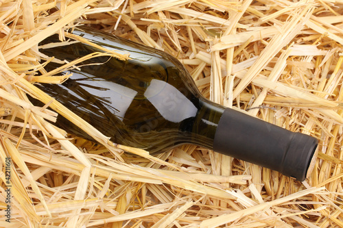 Bottle of great wine on hay