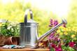 Leinwandbild Motiv Gardening