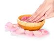 Beautiful female hands and rose petals