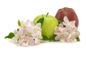 greena and red apples with flowers