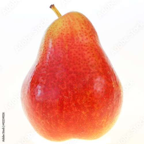 Pear Portrait