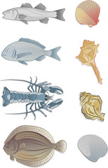 Sketches of animals used for fish dishes