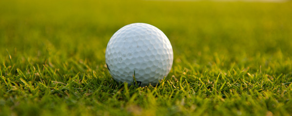 Golf ball on the field close-up horizontal