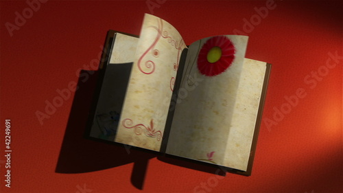 animated book with turning pages, decorative borders