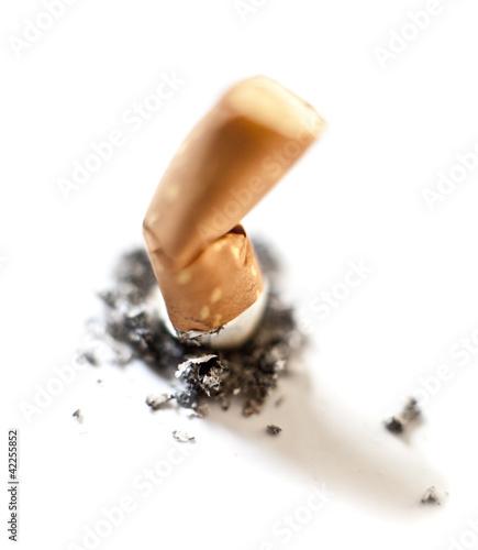 mégot de cigarette écrasé