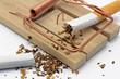 zigarette in mäusefalle