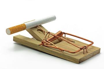 zigarette auf mäusefalle