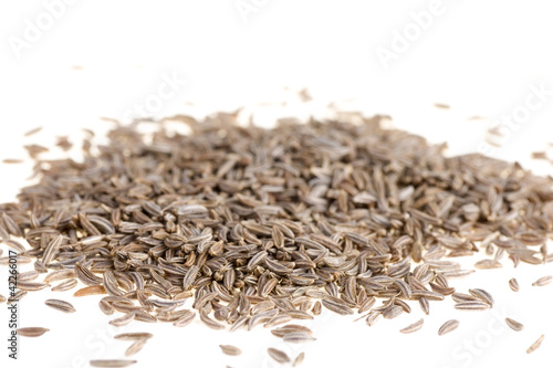 Fresh cumin  isolated on white background close up