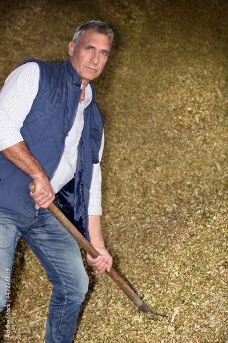 Man working in a barn