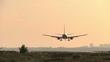 Silhouette of landing plane