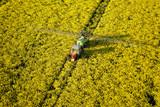 epandange pesticides champs de colza poster
