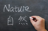 Nature - word written on a smudged blackboard poster