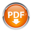 bouton internet PDF downloading icon.