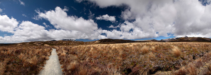 Karge Landschaft im Tongariro Nationalpark  (Panorama)