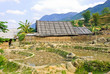 Rural view of rice crops in Sapa, Vietnam