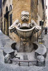 Drink water source, Firenze, Italy