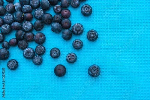 Blueberries on a blue background
